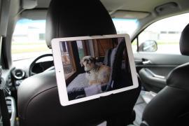 Nackstödshållare för iPad & läsplatta